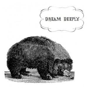 beardream-300x300
