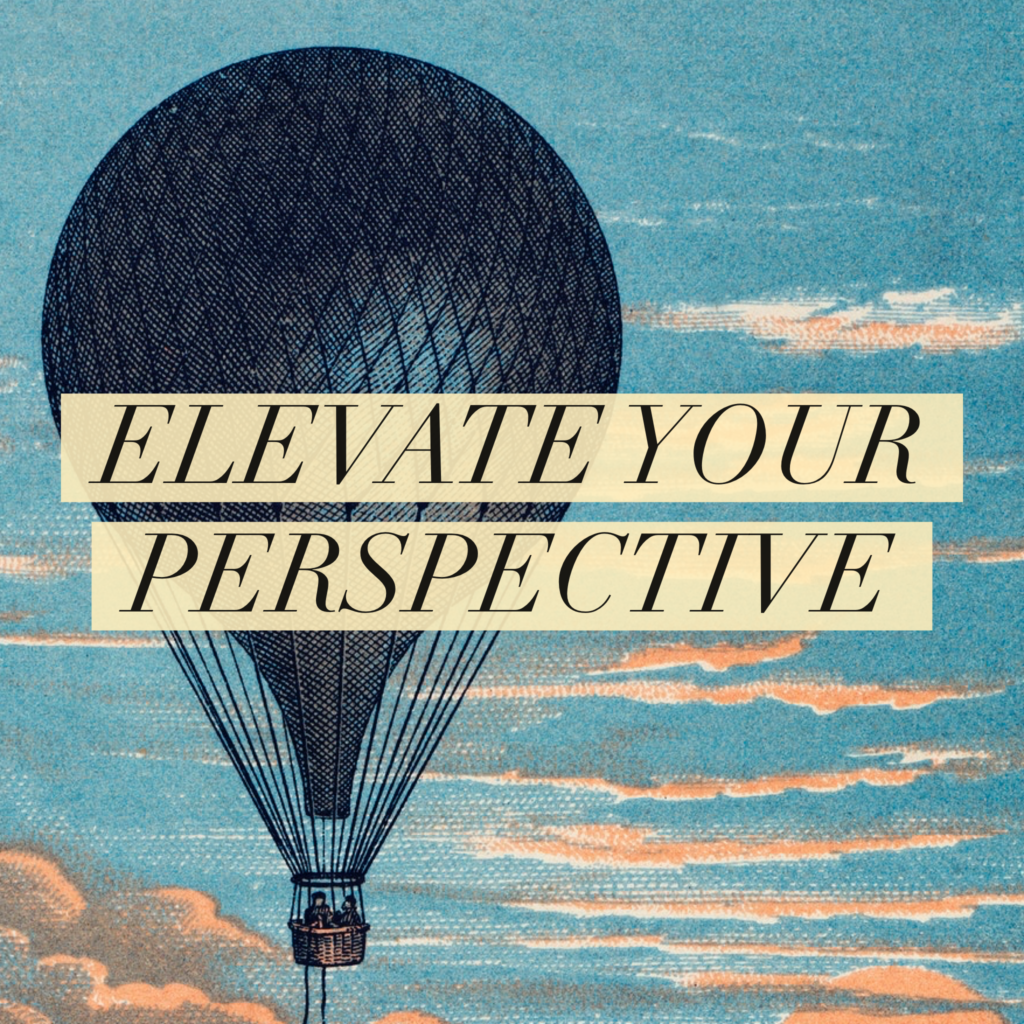 day 49 elevate your perspective