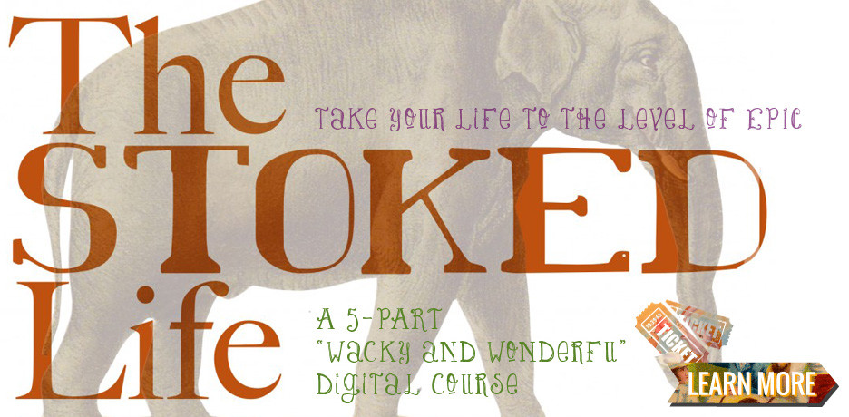 the-stoked-life-program-sarahg-seidelmann